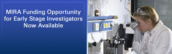 Funding Opportunity: MIRA for Early Stage Investigators Coming Soon