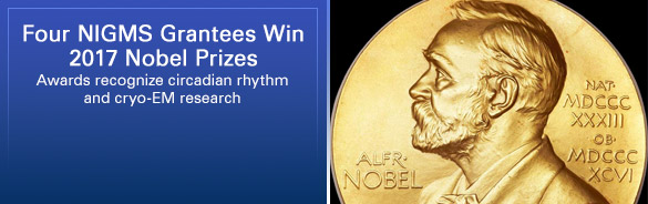 Four NIGMS Grantees Win 2017 Nobel Prizes. Awards re