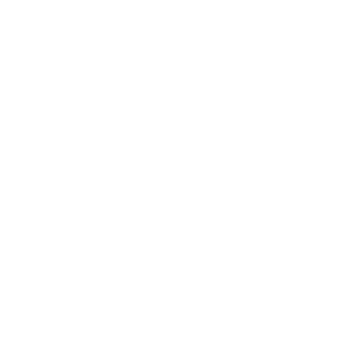 Ending Structural Racism icon