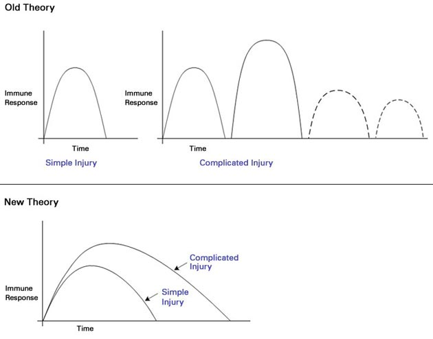 Graphs depicting the old theory (top) and the new theory (bottom). Credit: Adapted from Fig. 4.  A genomic storm: Refining the immune, inflammatory paradigm in trauma.  Wenzhong Xiao et al. JEM. 21 Nov. 2011.