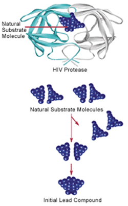 Some anti-HIV drugs were developed using structure-based drug design.