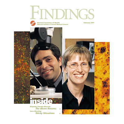 Findings Magazine Cover, February 2001.