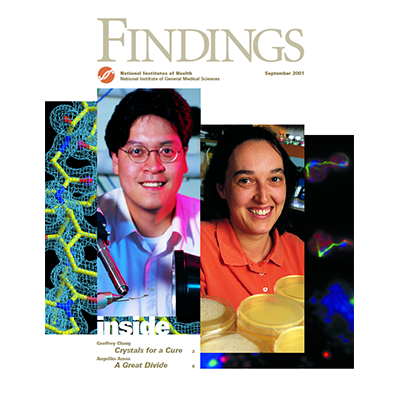 Findings Magazine Cover, September 2001.