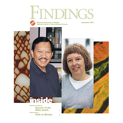 Findings Magazine Cover, September 2002.