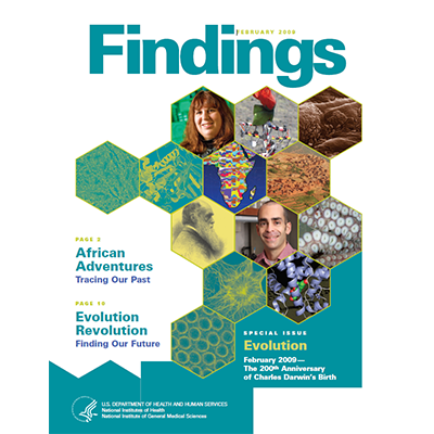 Findings Magazine Cover, February 2009.