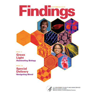 Findings Magazine Cover, September 2009.