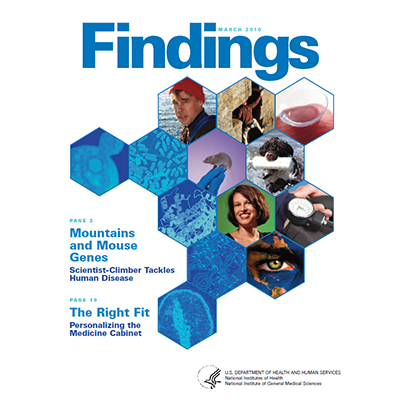 Findings Magazine Cover, March 2010.