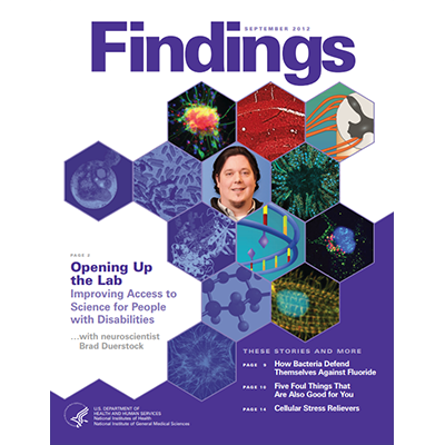 Findings Magazine Cover, September 2012.