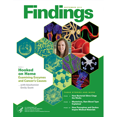 Findings Magazine Cover, September 2013.
