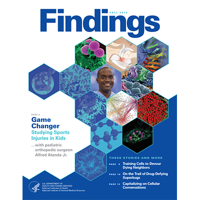 Findings Magazine Cover, Fall 2014.
