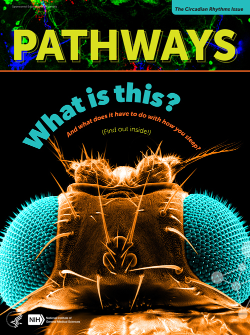 Pathways Circadian Rhythms Issue Cover