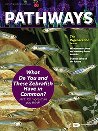 Pathways Regeneration Issue Cover