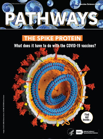 Pathways magazine icon.