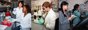 Photos of four students in different scientific settings.